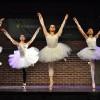 muestra danzas2014