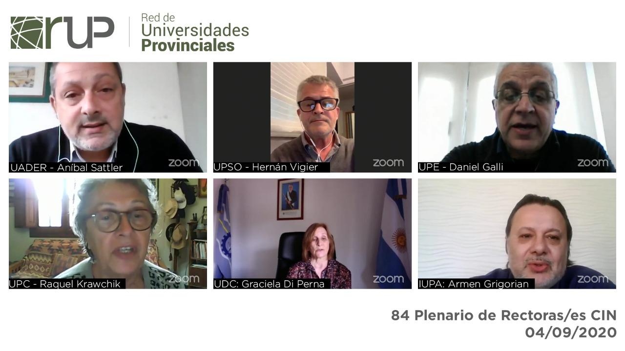 plenario CIN